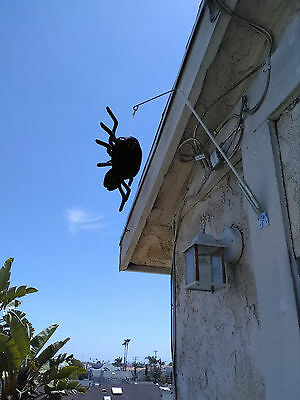 Birds away Attack Spider Woodpeckers  Scare device- stop woodpeckers damage