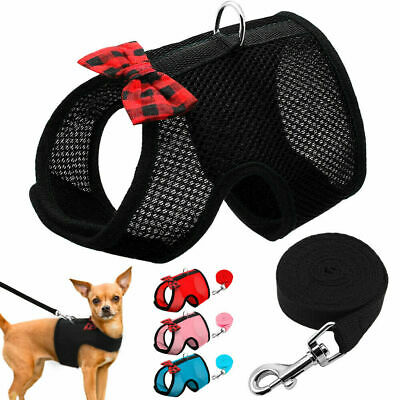 Dog Summer Harness & Leads Pet Puppy Cat Breathable Mesh Vest Chihuahua Yorkie