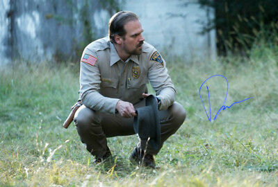 David Harbour Hopper Stranger Things Season 3 Poster Signed Autograph PRINT 6x4/""