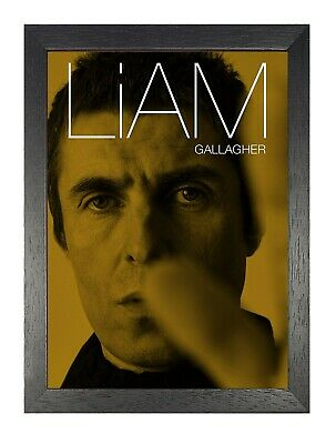 Liam Gallagher 10 Retro English Singer Poster Music Star Photo Oasis Band Print
