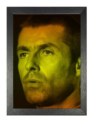 Liam Gallagher 15 English Singer Poster Music Star Photo Oasis Band Print Rock