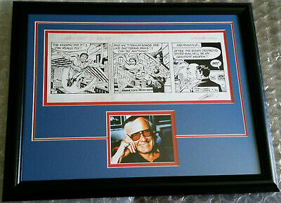 Spider-Man Newspaper Comic Strip Original Art By Larry Leiber Signed By Stan Lee