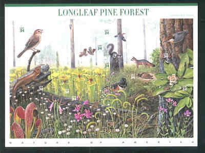 MNH NATURE OF AMERICA SERIES 4th In The Series Longleaf Pine Forest Scott 3611