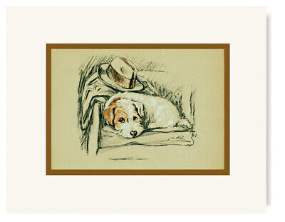 Vintage Illustration of a Sealyham Terrier  - Lucy Dawson  - 1936 (Reproduction)