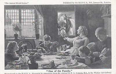 RSPCA Animal Charity World Ser Horse One of the Family Artist F Cotman Used 1932