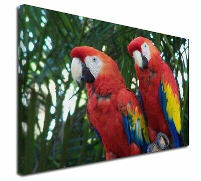 """Macaw Parrots in Palm Tree 30""""x20"""" Wall Art Canvas, Extra Large P, AB-PA12-C3020"""