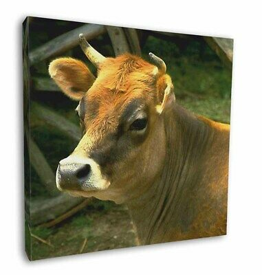 """Red Cow 12""""x12"""" Wall Art Canvas Decor, Picture Print, ACO-1-C12"""