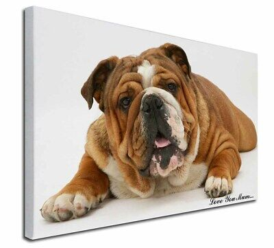 "Bulldog 'Love You Mum' 30""x20"" Wall Art Canvas, Extra Large Pic, AD-BU7lym-C3020"