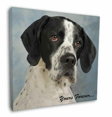 "English Pointer Dog ""Yours Forever..."" 12""x12"" Wall Art Canvas Deco, AD-EP1y-C12"