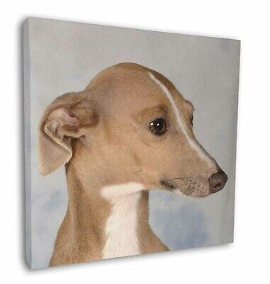 "Greyhound Dog 12""x12"" Wall Art Canvas Decor, Picture Print, AD-GH4-C12"