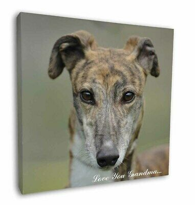 "Greyhound Dog 'Love You Grandma' 12""x12"" Wall Art Canvas Decor, P, AD-GH7lyg-C12"