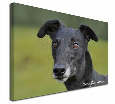 "Black Greyhound 'Love You Mum' 30""x20"" Wall Art Canvas, Extra L, AD-GH8lym-C3020"