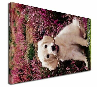 """Golden Retriever Pup 'Yours Forever' 30""""x20"""" Wall Art Canvas, Ex, AD-GR51y-C3020"""