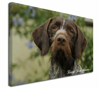 "German Wirehaired Pointer 'Love You Mum' 30""x20"" Wall Art Canv, AD-GWP1lym-C3020"