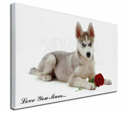 """Husky with Red Rose 'Love You Mum' 30""""x20"""" Wall Art Canvas, Ex, AD-H54Rlym-C3020"""