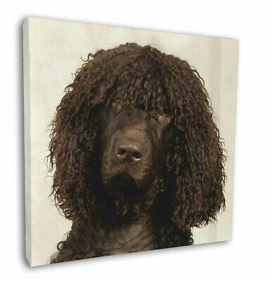 Irish Water Spaniel Dog Design Retractable Acrylic Ball Pen by paws2print