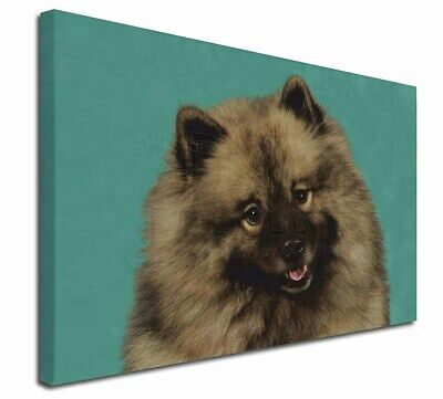 "Keeshond Dog 30""x20"" Wall Art Canvas, Extra Large Picture Print D, AD-KEE1-C3020"