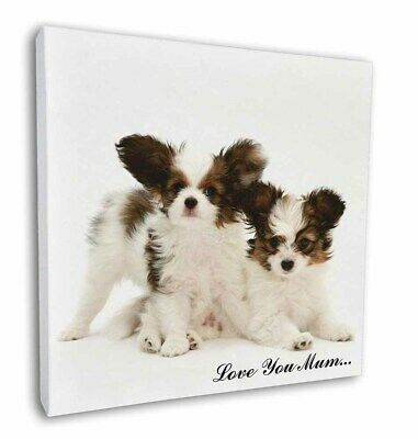 "Papillon Dogs 'Love You Mum' 12""x12"" Wall Art Canvas Decor, Pict, AD-PA65lym-C12"