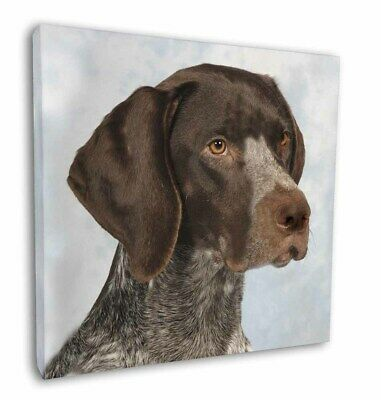"German Pointer Dog 12""x12"" Wall Art Canvas Decor, Picture Print, AD-PG2-C12"