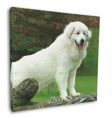 "Pyrenean Mountain Dog 'Love You Mum' 12""x12"" Wall Art Canvas Deco, AD-PM1lym-C12"