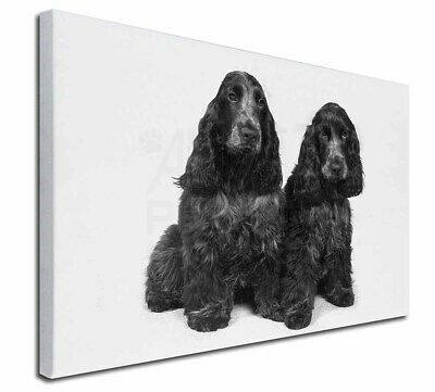 """Blue Roan Cocker Spaniel Dogs 30""""x20"""" Wall Art Canvas, Extra Large, AD-SC1-C3020"""