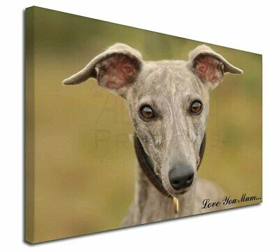 """Whippet Dog 'Love You Mum' 30""""x20"""" Wall Art Canvas, Extra Larg, AD-WH92lym-C3020"""