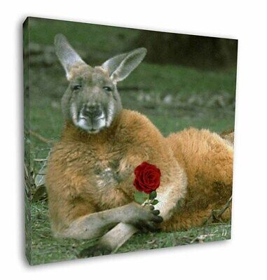 "Kangaroo with Red Rose 12""x12"" Wall Art Canvas Decor, Picture Print, AK-1R-C12"