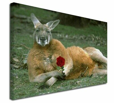 "Kangaroo with Red Rose 30""x20"" Wall Art Canvas, Extra Large Picture, AK-1R-C3020"