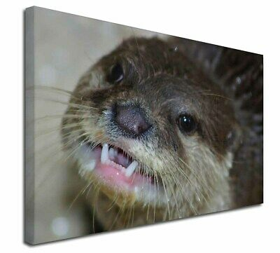 """Cheeky Otters Face 30""""x20"""" Wall Art Canvas, Extra Large Picture Prin, AO-1-C3020"""