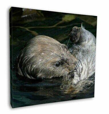 """Floating Otter 12""""x12"""" Wall Art Canvas Decor, Picture Print, AO-3-C12"""