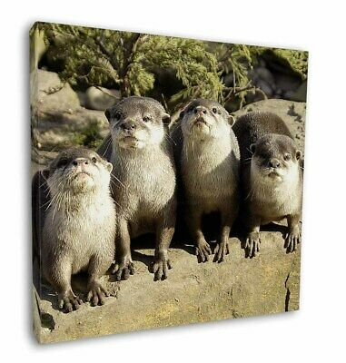 """Cute Otters 12""""x12"""" Wall Art Canvas Decor, Picture Print, AO-6-C12"""