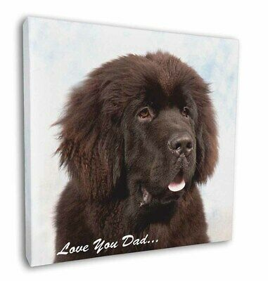 "Newfoundland Dog 'Love You Dad' 12""x12"" Wall Art Canvas Decor, Pictu, DAD-79-C12"