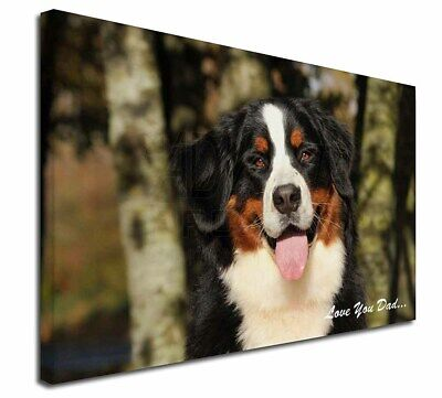 "Bernese Mountain Dog 'Love You Dad' 30""x20"" Wall Art Canvas, Extra , DAD-9-C3020"