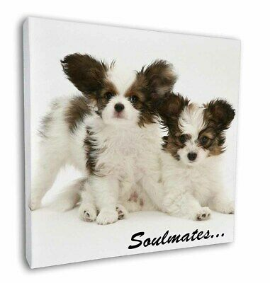 "Papillon Puppy Dog 'Soulmates' 12""x12"" Wall Art Canvas Decor, Pictu, SOUL-44-C12"