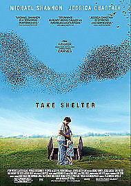 Take Shelter (Import)