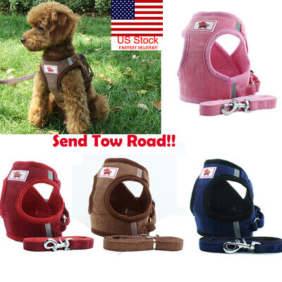 US Small Cat Dog Harness Leash Vest Pet Puppy Walking Leads Safety Control Soft