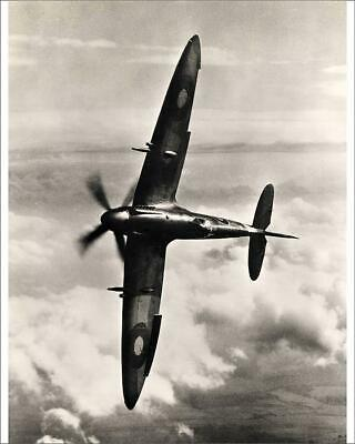 "14223727 10""x8"" (25x20cm) Print Supermarine Spitfire XIV knife-edged"