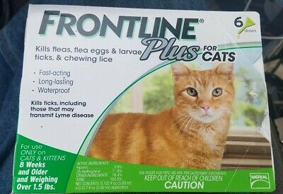 Frontline Plus for Cats & Kittens 8 weeks or older 6 Doses