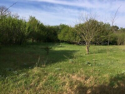 Bulgaria for sale info land 16 km to the sea pay monthly 100 pounds per month