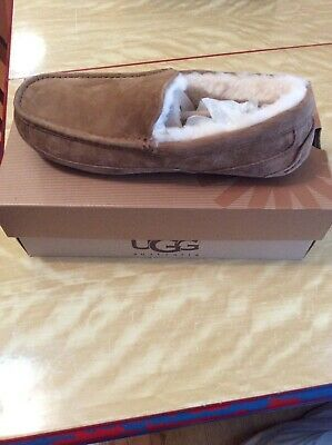 8abaffc6c UGG AUSTRALIA COZY Cable Knit Slippers 1019666 Fawn Beige Cable ...