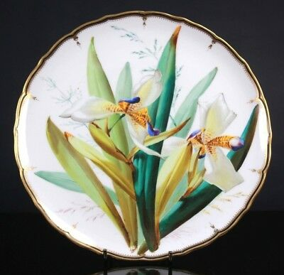 Antique Fine Quality English Porcelain Flower Plate Circa 1860 Probably Coalport