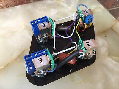 Terrific Jimmy Page Wiring Harness 50S Style Solderless Push Pull Les Paul Wiring Cloud Tobiqorsaluggs Outletorg