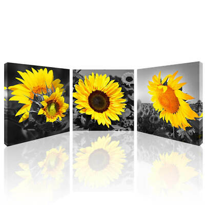 Sunflower Wall Art Home Decor Canvas Picture Giclee Print Framed Flower Painting