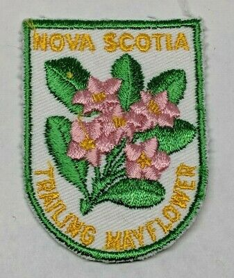 Vintage Nova Scotia Trailing Mayflower Canada Provincial Flower Patch