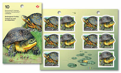 2019-Endangered Turtles: Permanent Domestic stamps - Booklet of 10
