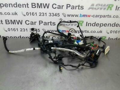 BMW F30 3 SERIES Engine Wiring Loom 12518516259