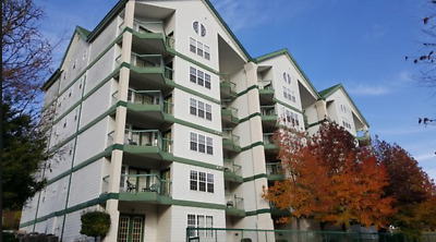 The Carriage Place Branson Large 2 Bedroom Deluxe July 21-26