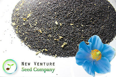 3 lbs pounds Raw Unprocessed Kosher Blue Afghan POPPY SEEDS (New Venture Seed)!!