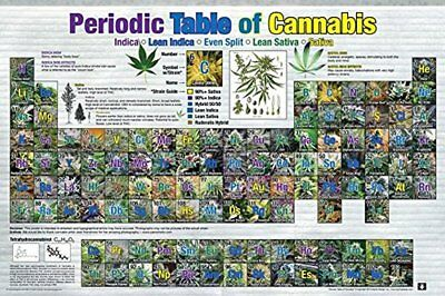 Periodic Table of Cannabis (Weed Marijuana Table) 36x24 Poster Educational