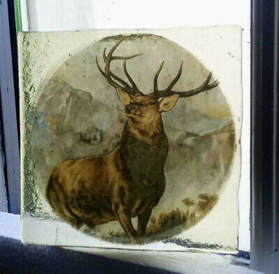 Stained Glass - Red Stag hunting pane Kiln fired transfer painted rare